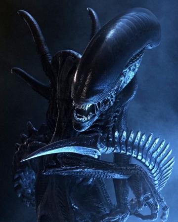 Alien T-shirt2