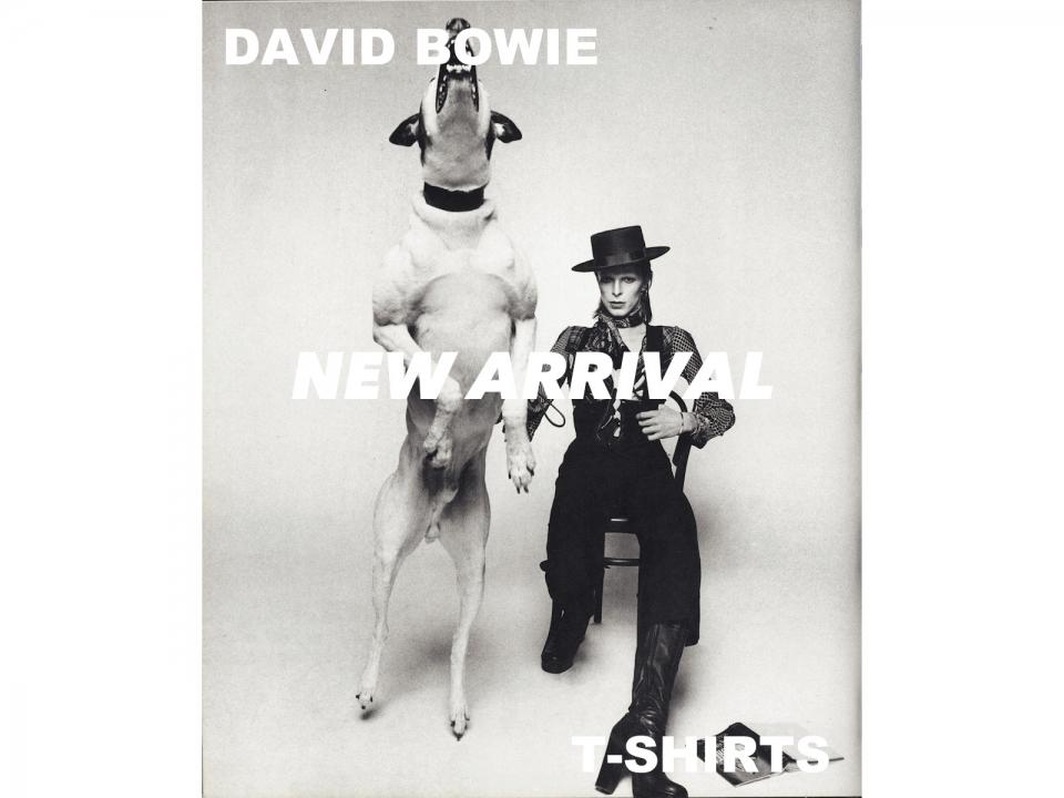 DAVID BOWIE T-SHIRTS