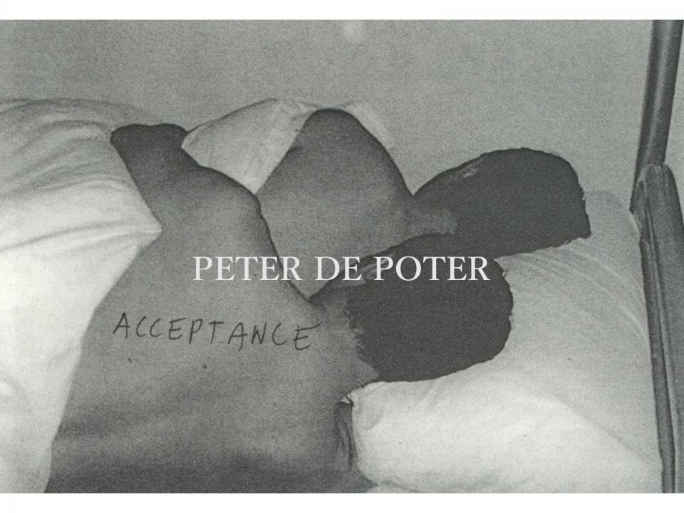 PETER DE POTER
