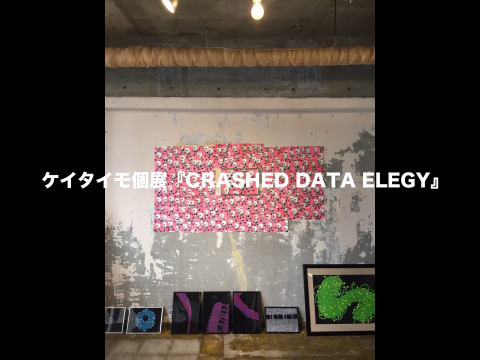 CRASHED DATA ELEGY