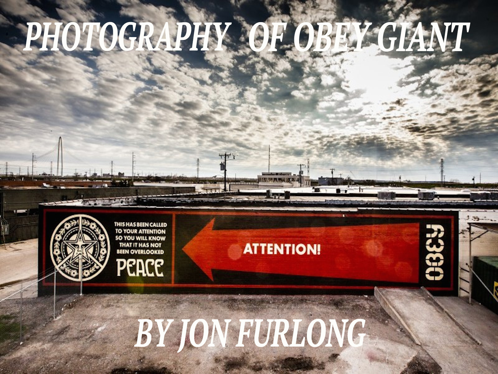COVERT TO OVERT: PHOTOGRAPHY OF OBEY GIANT BY JON FURLONG