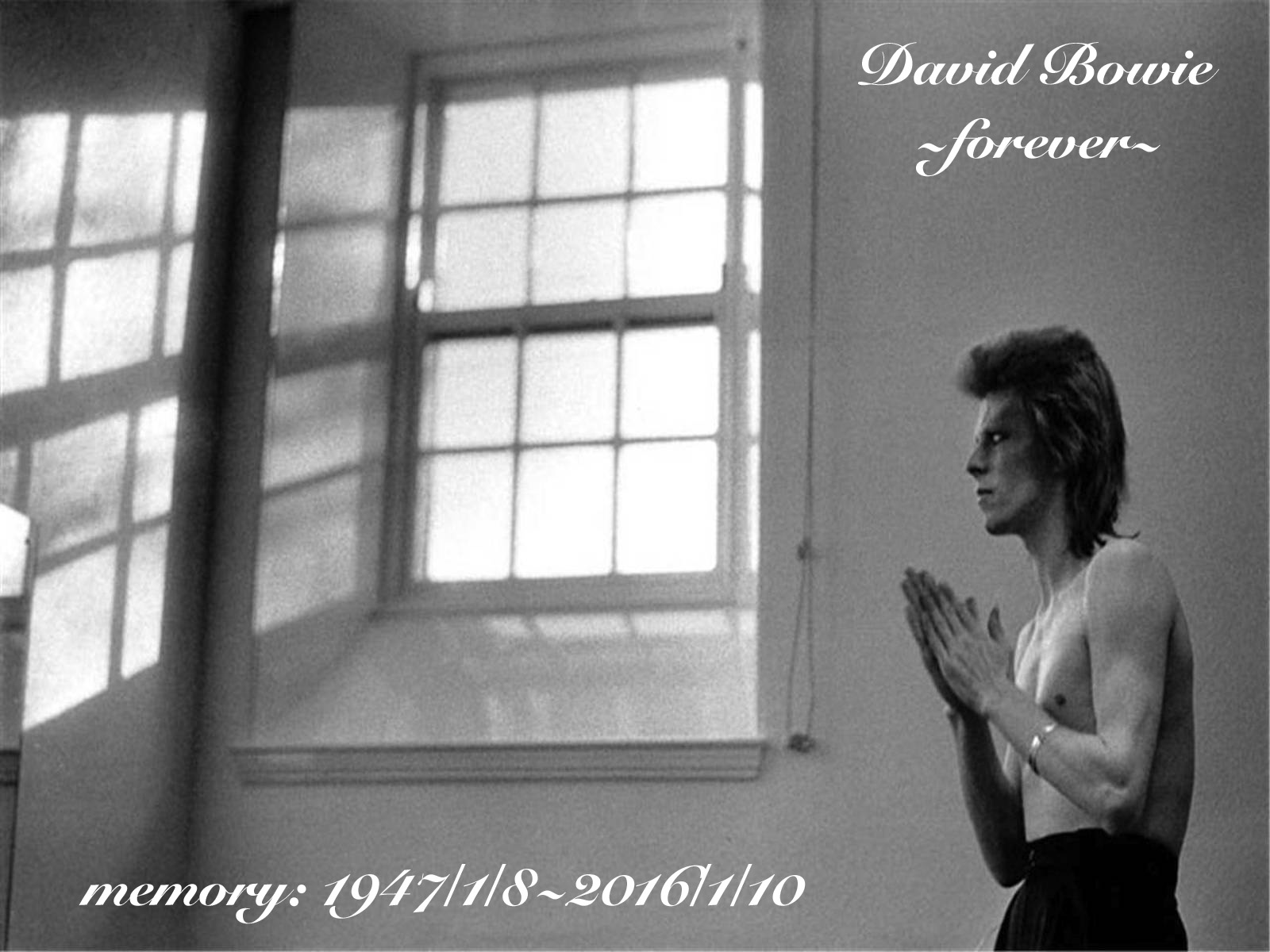 DAVID BOWIE -FOREVER-