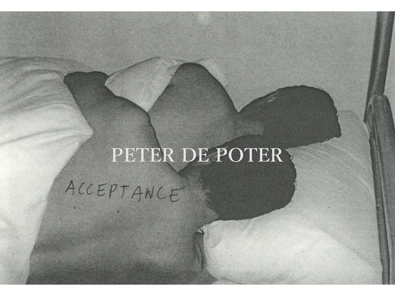 PETER DE POTTER
