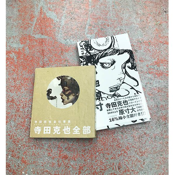ART BOOK COLLECTION 寺田克也
